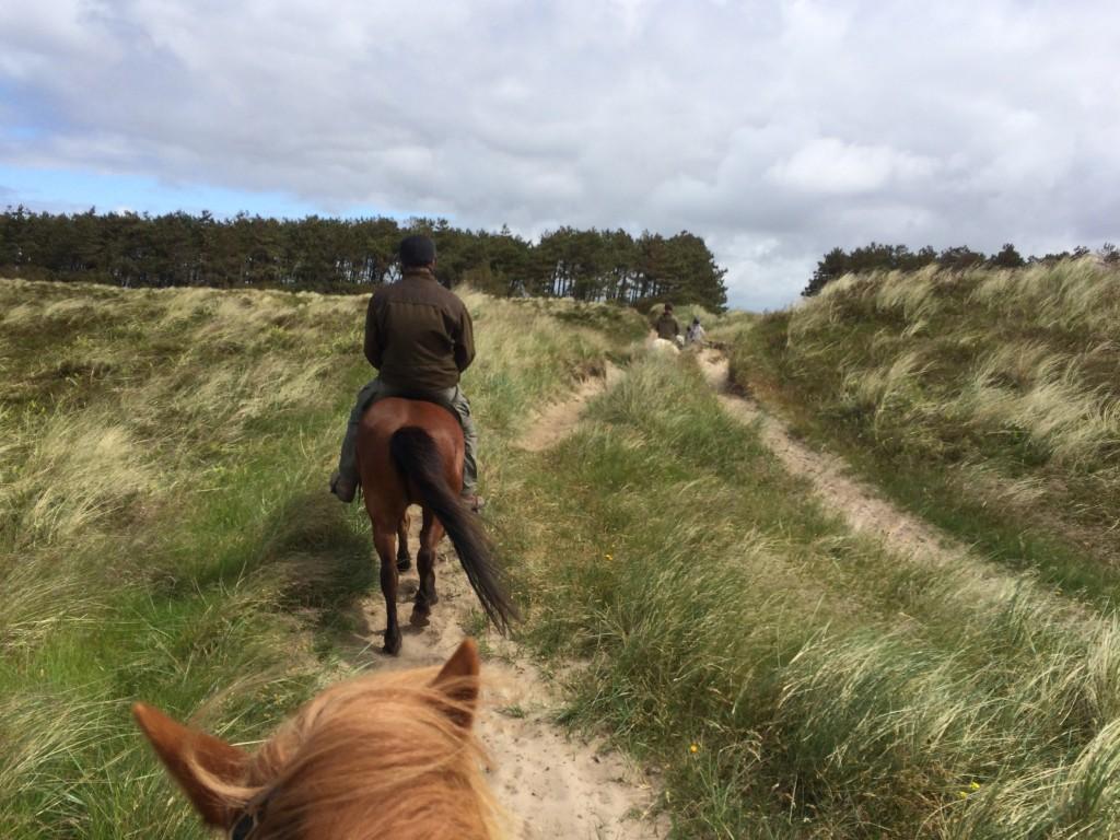 Ridetur på Rømø