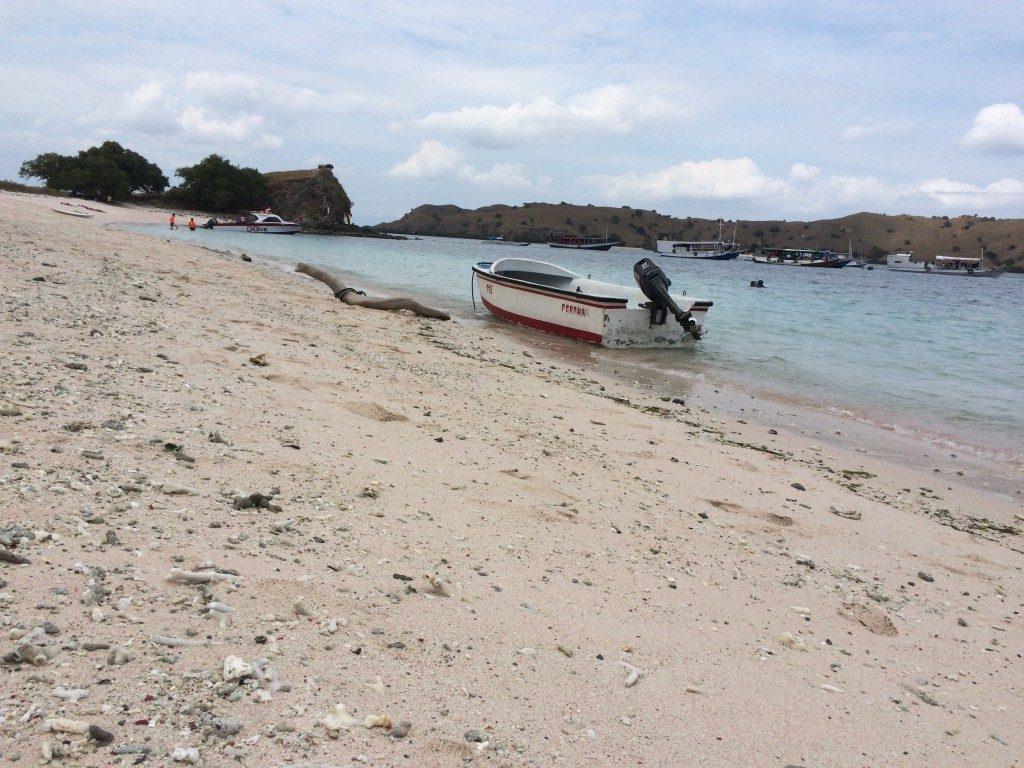 Komodo bådtur