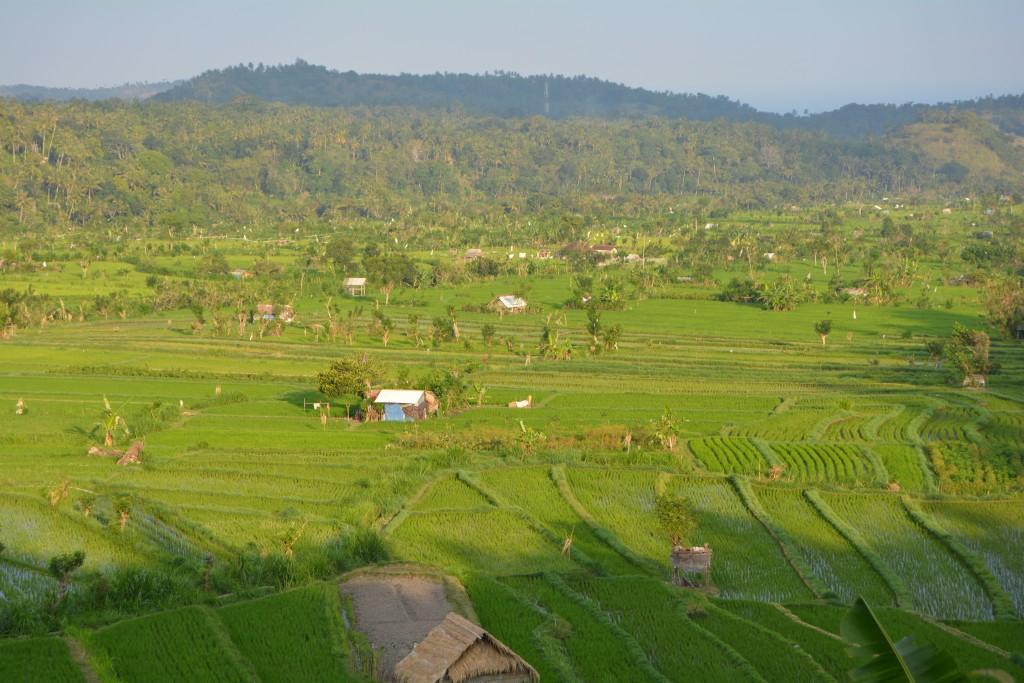 Smukke Bali