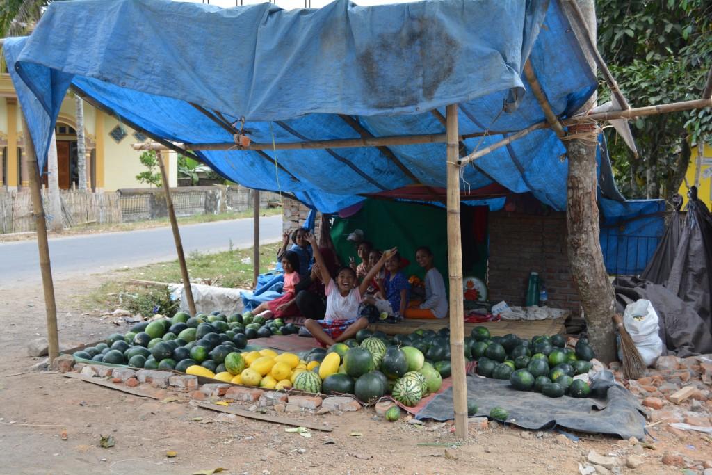 Friske vandmelon Lombok