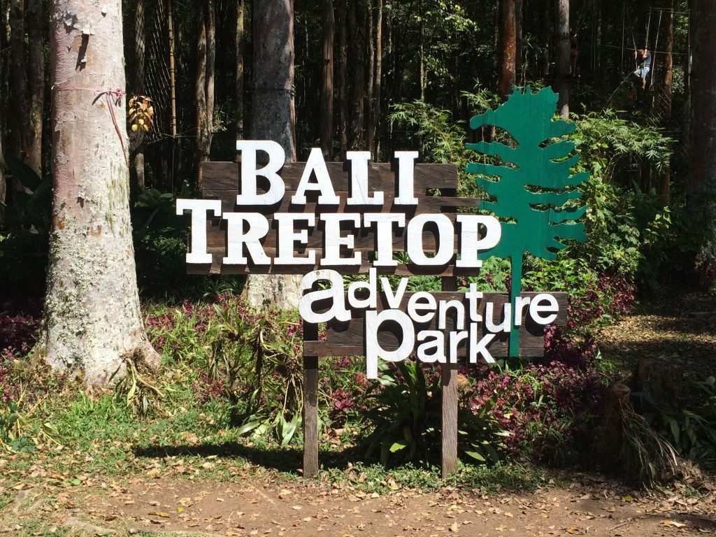 Bali tree top adventure