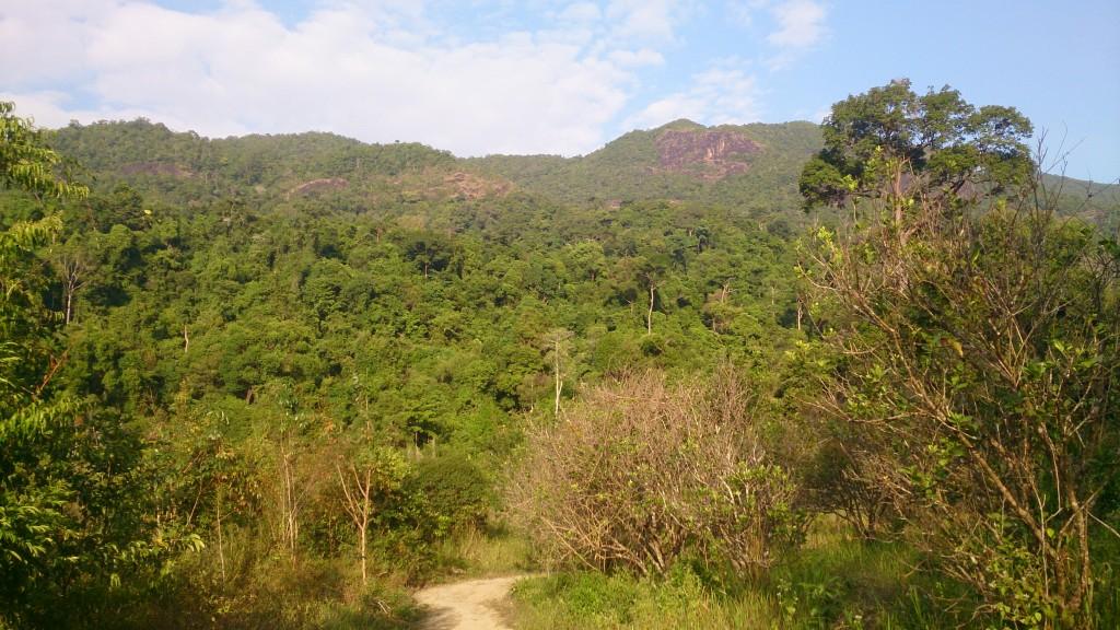 Koh Chang landskab