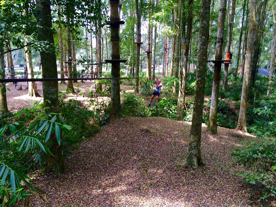 Tree top adventure Bali