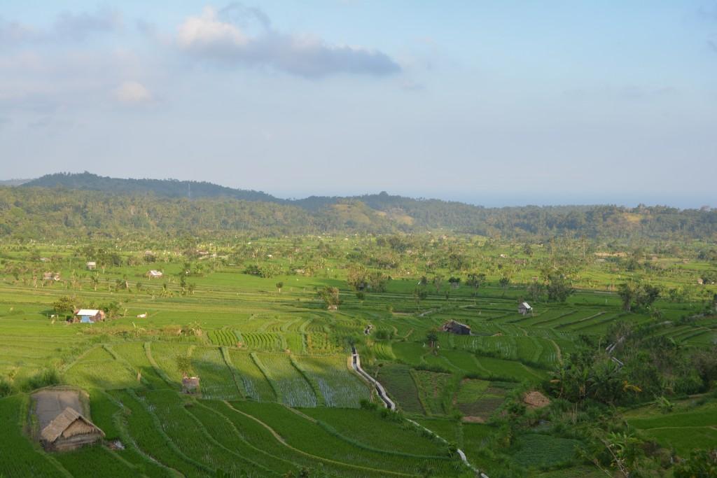 Landskab på Bali