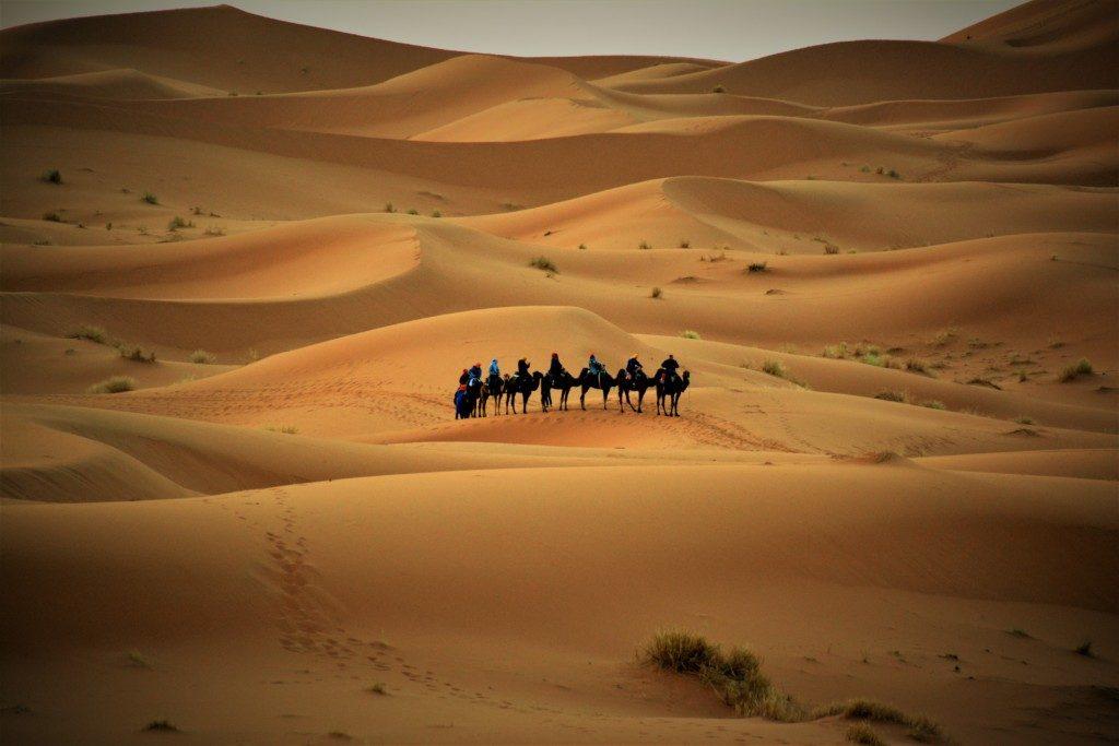 Udflugt til Sahara ørkenen