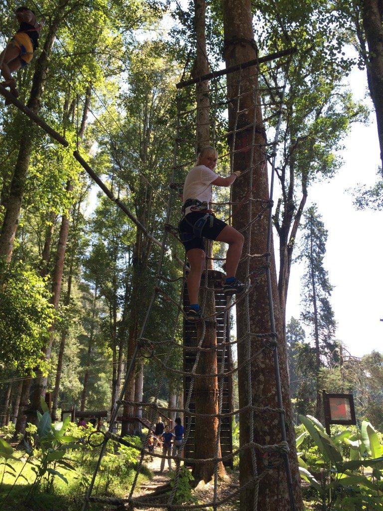 Tree top adventure på Bali
