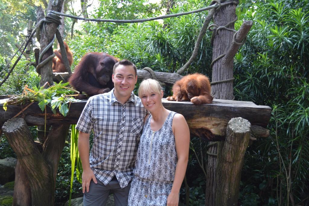Verdens bedste zoologiske have Singapore