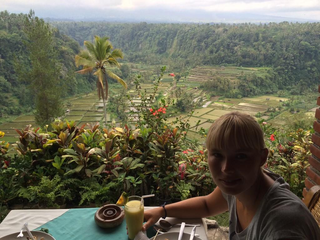 Ris terasser Bali