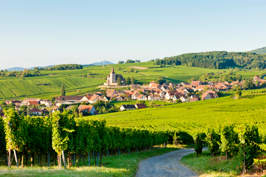 Alsace wineroute, Frankrig