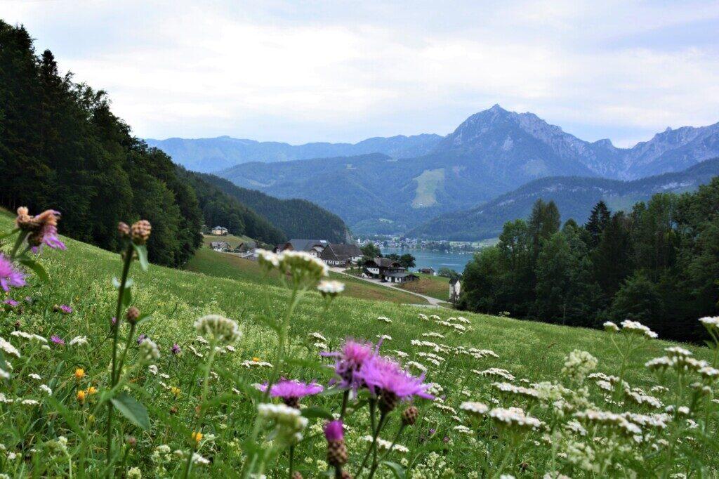 Vandreruter i Østrig