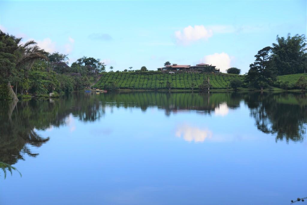 3 unikke overnatningssteder på Mauritius
