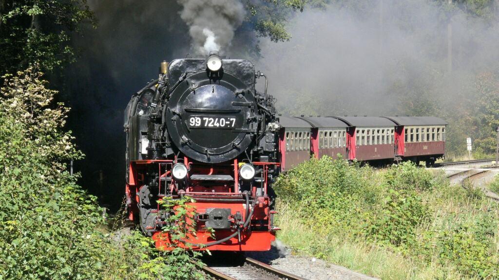 Oplevelser i Harzen for børn