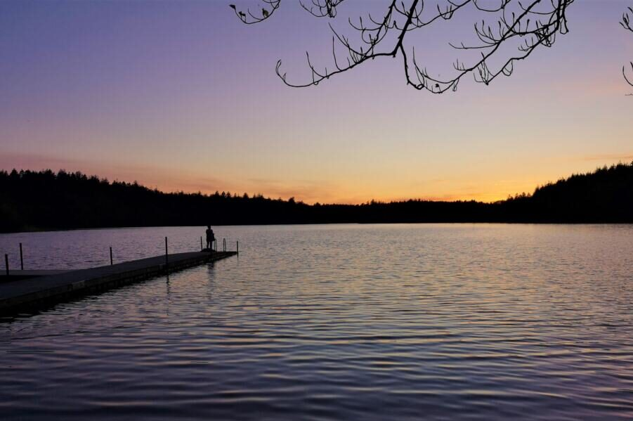 Alminde sø Silkeborg